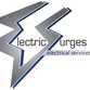 Electric Surges logo