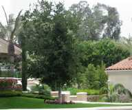 Landscape Design by Zuniga Group Inc