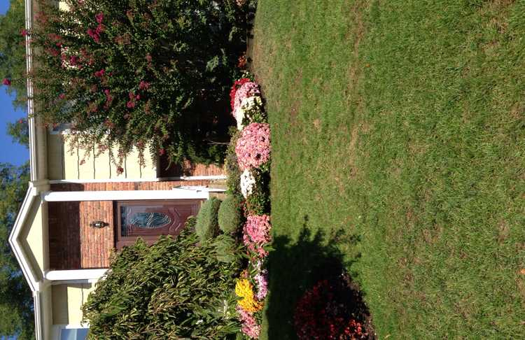 Photo(s) from Oasis Landscaping Llc
