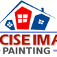 Precise Image Painting logo