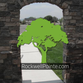 Rockwell Pointe Inc logo