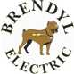 Brendyl Electric logo